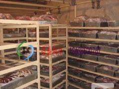 肉品冷藏库