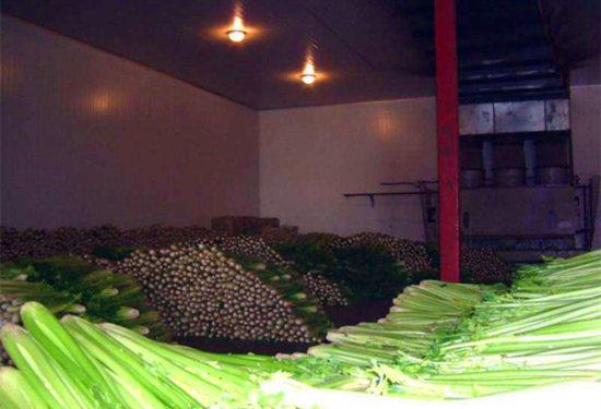 30吨小型蔬菜保鲜库一般能保存多久